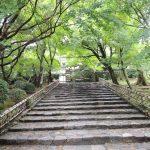 神社に向かう石階段の写真