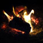 木が燃えている写真